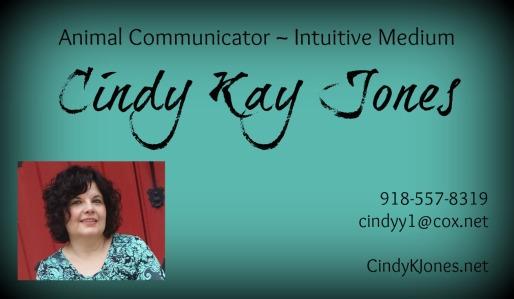 cindybusinesscard